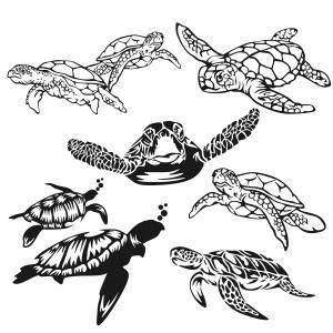 Sea Turtle Cuttable Design Turtle Silhouette Turtle Images Sea