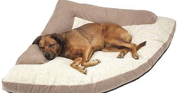 Account Suspended Dog Bed Large Corner Dog Bed Nest Dog Bed