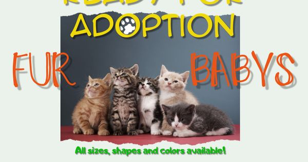 Customize This Design With Your Video Photos And Text Easy To Use Online Tools With Thousands Of Stock Photos Cl Pet Adoption Adoption Pets