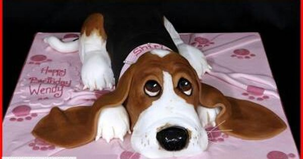 Basset Hound Cake Luv It Dog Cakes Basset Puppies Free Puppies