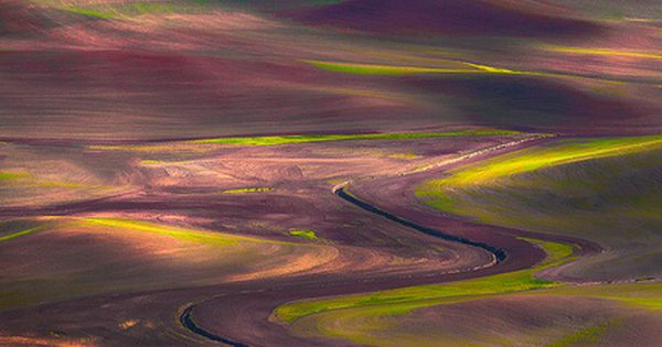 "Tapestry of colors in the ""Palouse country"" of eastern Washington State •"