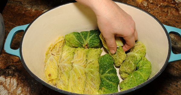 Braised cabbage, Cabbage roll and Cabbage rolls recipe on Pinterest