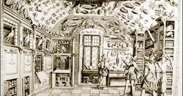 anonyme le cabinet de ferrante imperato naples 1672 gravure biblioth que estense mod ne. Black Bedroom Furniture Sets. Home Design Ideas