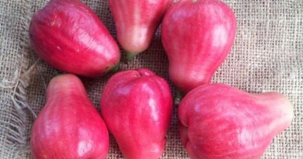 Pumarosa delicias de puerto rico pinterest food and for Ambarella cambodian cuisine