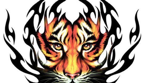 tiger word art  tiger tribal tattoo designs  pams