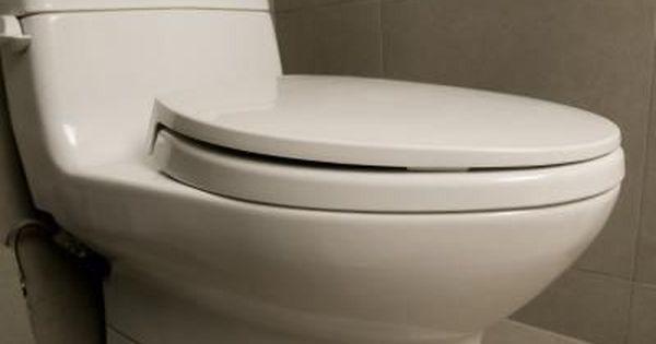 How To Remove The Screws On A Toilet Seat Clogged Toilet Toilet Drain Flush Toilet