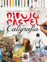 Enciclopedia Ilustrada De Dibujo Pastel Y Caligrafia Ian Sidaway Et Al Libro De Dibujo Libros De Arte Clases De Dibujo