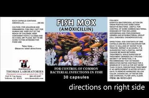 9 alternative antibiotics you can use when shtf that don 39 t for Can humans take fish mox