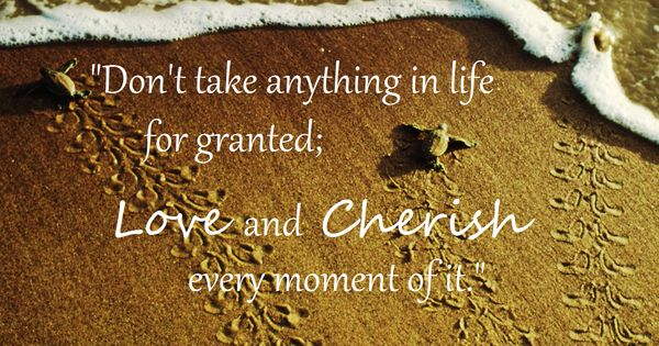 """Don't Take Anything In Life For Granted; Love And Cherish"