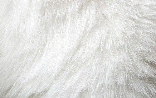 White Fur Rug Fun Fur White World Pinterest Fur