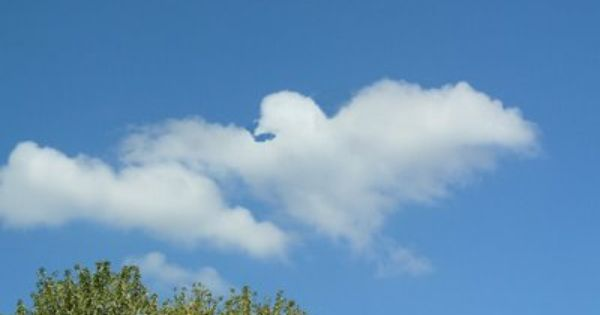 Image detail for -Clouds That Look Like Something Else ...