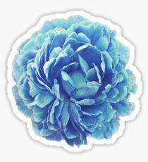 Flowers Stickers Pegatinas Bonitas Pegatinas Wallpaper Pegatinas