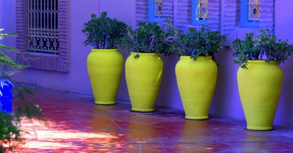 Color Scheme Love: Marrakech, Morocco Jardins Majorelle