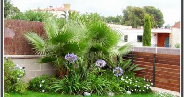 Fotos de jardines peque os para casas bonitos jardines for Jardines pequenos de casas fotos