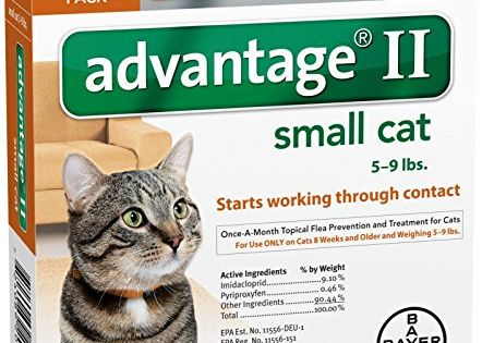 Advantage Ii Small Cat 4pack Check Out This Great Product This Is An Affiliate Link Catfleatickc Flea Control For Cats Cat Fleas Flea Prevention For Cats
