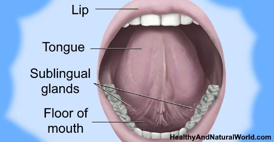 How To Get Rid Of Sores Bumps Or Blisters Under Tongue Tongue