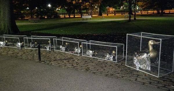 Artist Cages Make Way For Ducklings Statue To Protest Child