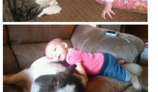 So cute! Puppies AND babies!