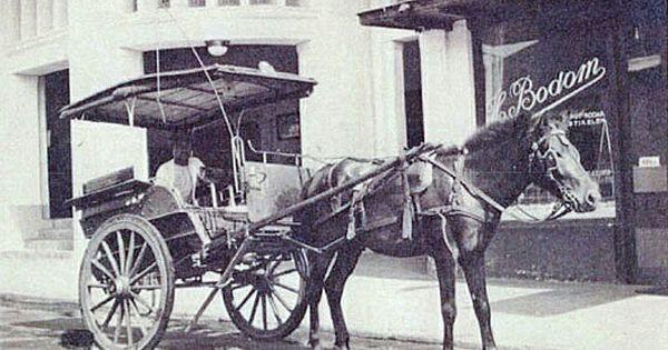 Delman Didepan Studio Foto Hjalmar Bodom Naripanweg Bandung 1930 Indonesia