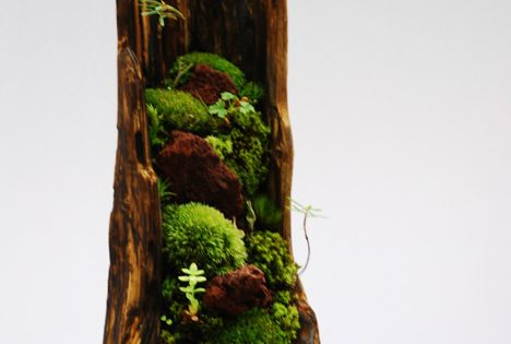 Mountain- love the combination of wood and plants to make something look