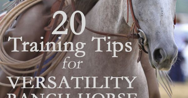 Rock ranch horse competitions with this advice for ranch riding, trail, reining,