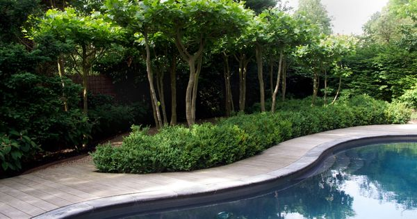 Pin by l d v on gardens pinterest gardens for Garden pool facebook