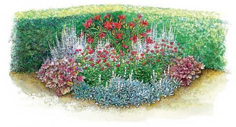 Gestaltungstipps Für Kleine Staudenbeete | Trends Blumenbeet Anlegen Teppichbeet Tipps