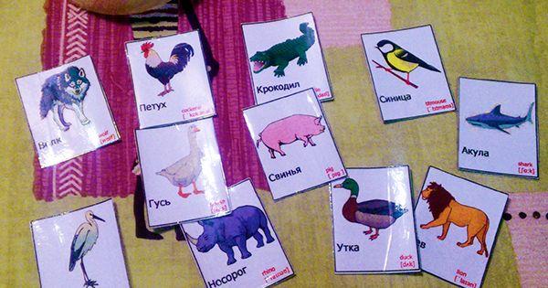 Животные на английском языке для детей картинки