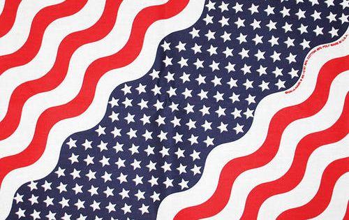 The Bandanna Company Bandanna Stars Stripes At Menards The Bandanna Company Bandanna Stars Stripes Patriotic Gear Bandannas Stripes