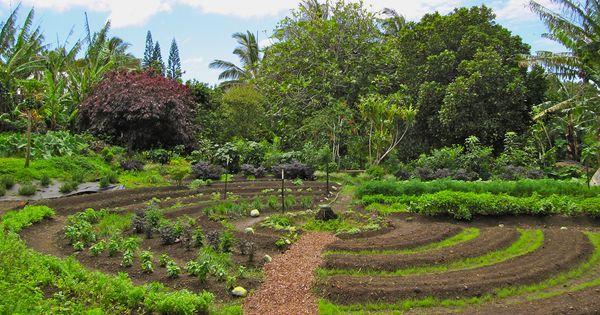6 livres sur la permaculture t l charger gratuitement for Permaculture rendement