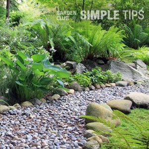 Build A Dry Creek Bed That Rocks With Images Shade Garden