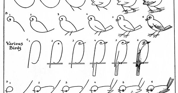 step by step bird doodles