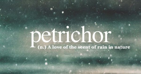 Petrichor | Quotes | Pinterest | Teen dictionary, Rain and ...