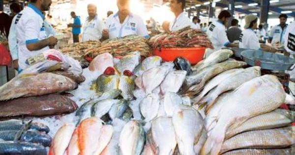 Winter Cools Down Prices At Deira Fish Market Fish Cool Stuff Marketing