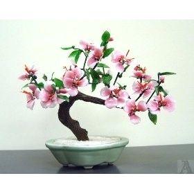 Your Bonsai Inspiration For Today Bonsaiinspiration Bonsai Tree Bonsai Art Diy Garden Projects