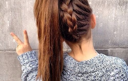 braided ponytail-- long hair style