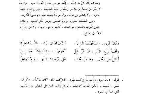 موسوعة الشعر العربي ايليا حاوي Word Search Puzzle Math Internet Archive