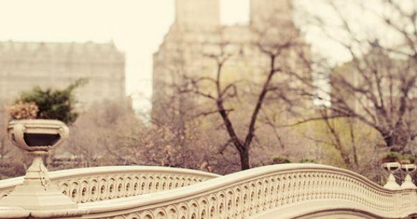 Central Park Bow Bridge centralpark park nyc bridge newyork potamkinnyc