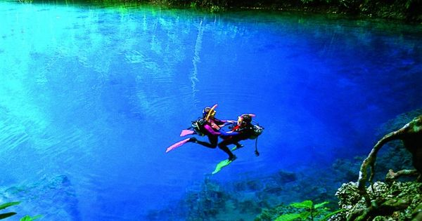 Scuba diving in the Blue Holes in Espiritu Santo Island, Vanuatu -