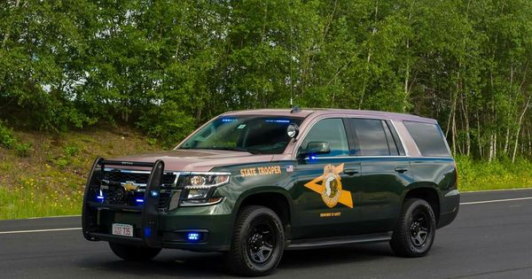 How To Make An Interesting Art Piece Using Tree Branches Ehow Police Cars New Hampshire State Police State Trooper