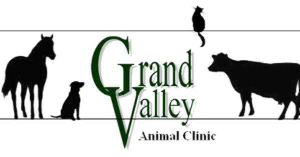 Grand Valley Animal Clinic Brandon Canada Pet Clinic Veterinary Hospital Grand Valley
