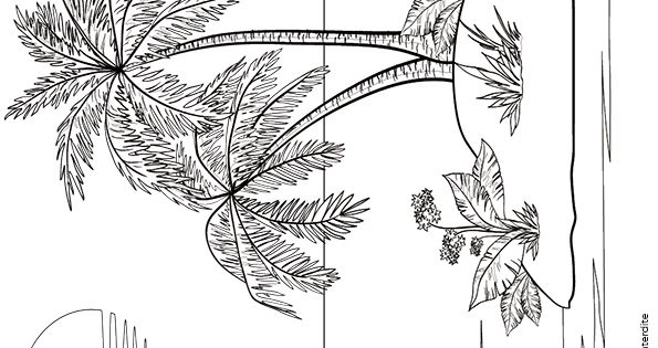 Coloriage d une le et d un voilier dessins pinterest - Dessin d une ile ...
