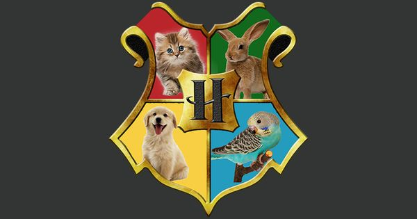 Fun Activity Where The Students Get To Find Out Into Which House Of Hogwarts They Would B Harry Potter Sorting Harry Potter Printables Harry Potter Sorting Hat