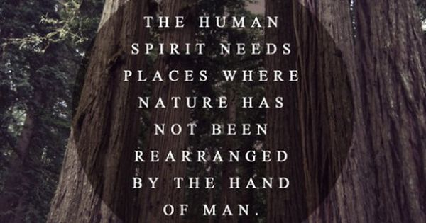 """The human spirit needs places where nature has not been rearranged by"