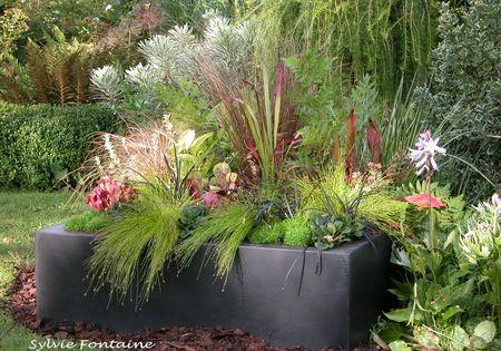 Comme des mini jardins le jardin de sylvie fontaine nature sauvage pinterest mini for Fontaine de jardin nature et decouverte