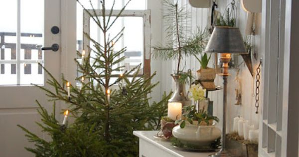 Foyer Flooring Xtra : That little quot always potted xmas tree in the corner