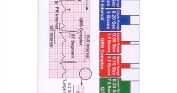 EKG ruler & diagram for basic ekg interpretation - reference badge ID