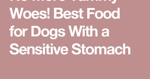 Home Cooked Dog Food Great Danes