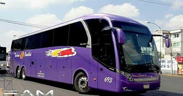Turismo En Omnibus Bussar