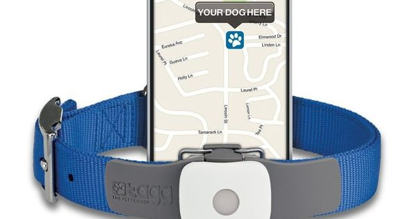 dog tracking app iphone commercial